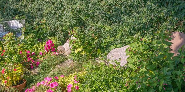 Gardainsel und Garten Heller, zwei unstvollen Schätzen